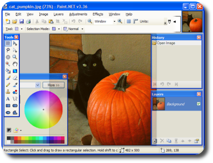cat_pumpkin2